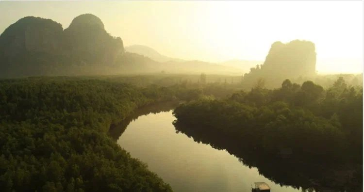 10 советов по съемке видео природы для видеостоков.